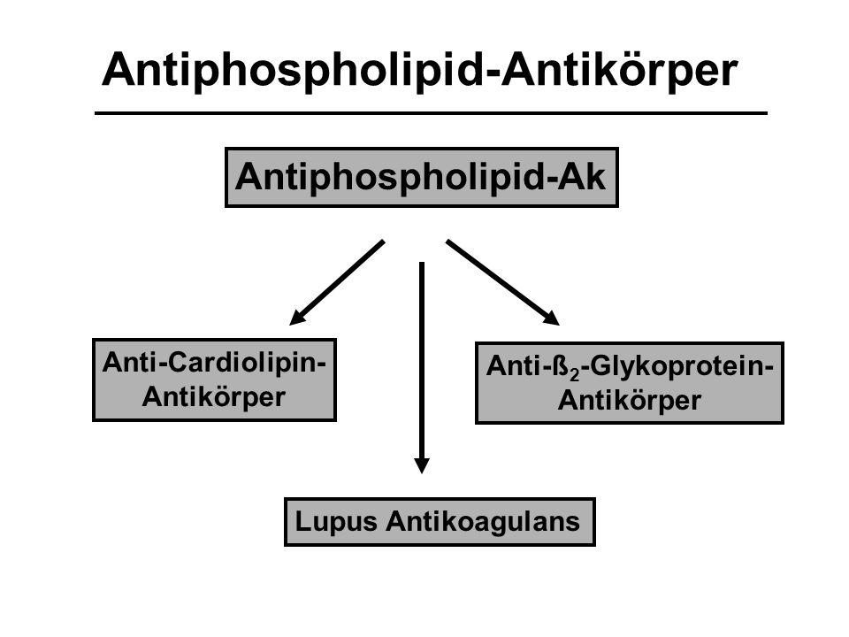 Antiphospholipid-Ak Lupus Antikoagulans Anti-Cardiolipin- Antikörper Anti-ß 2 -Glykoprotein- Antikörper Antiphospholipid-Antikörper