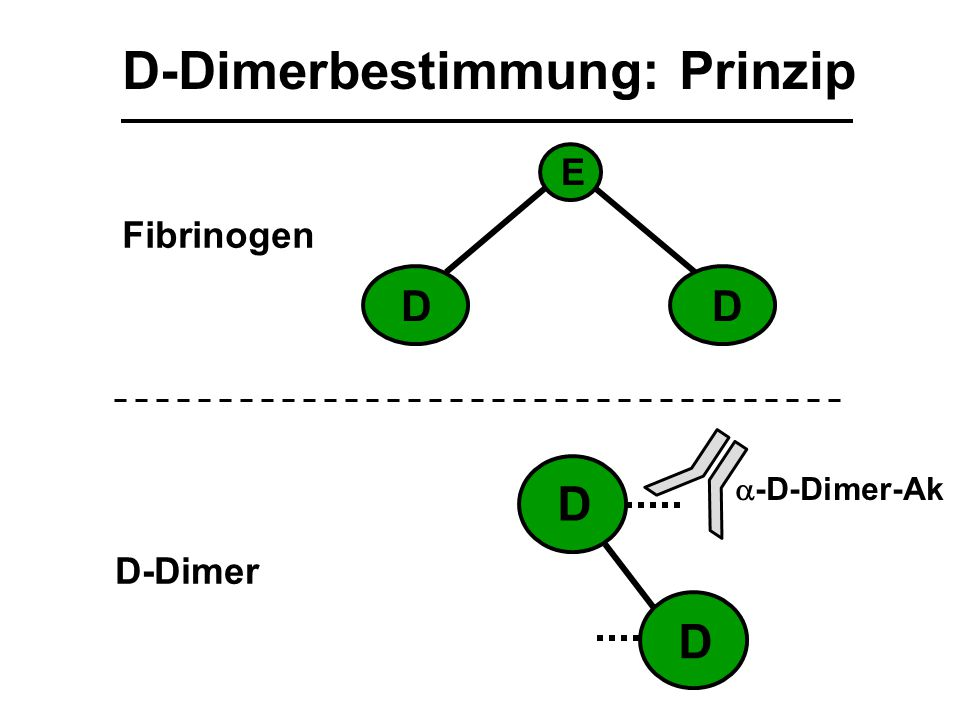 D-Dimerbestimmung: Prinzip D D DD E Fibrinogen D-Dimer  -D-Dimer-Ak