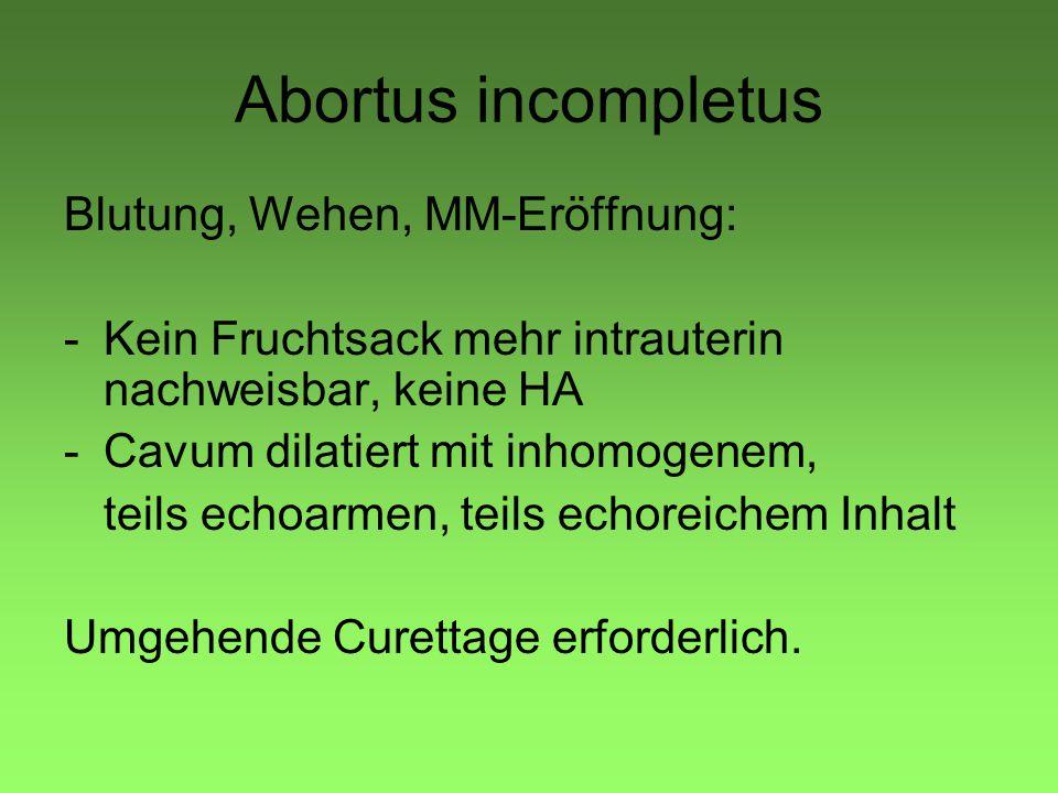 Abortus incompletus Blutung, Wehen, MM-Eröffnung: -Kein Fruchtsack mehr intrauterin nachweisbar, keine HA -Cavum dilatiert mit inhomogenem, teils echoarmen, teils echoreichem Inhalt Umgehende Curettage erforderlich.