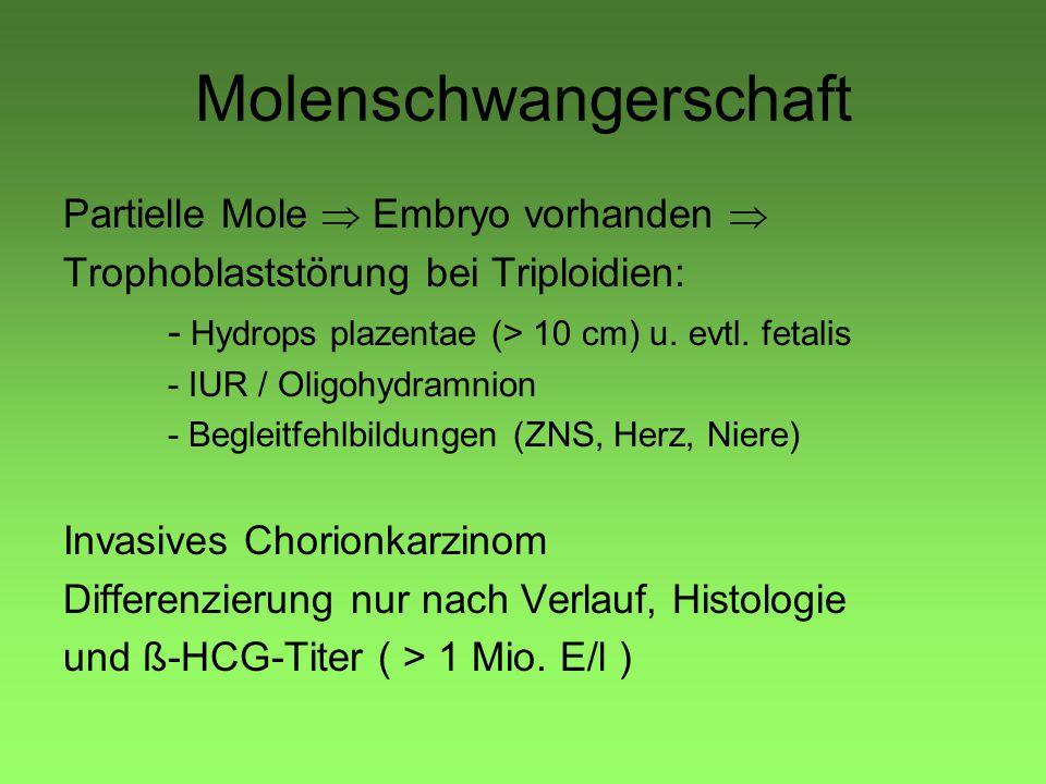 Molenschwangerschaft Partielle Mole  Embryo vorhanden  Trophoblaststörung bei Triploidien: - Hydrops plazentae (> 10 cm) u.