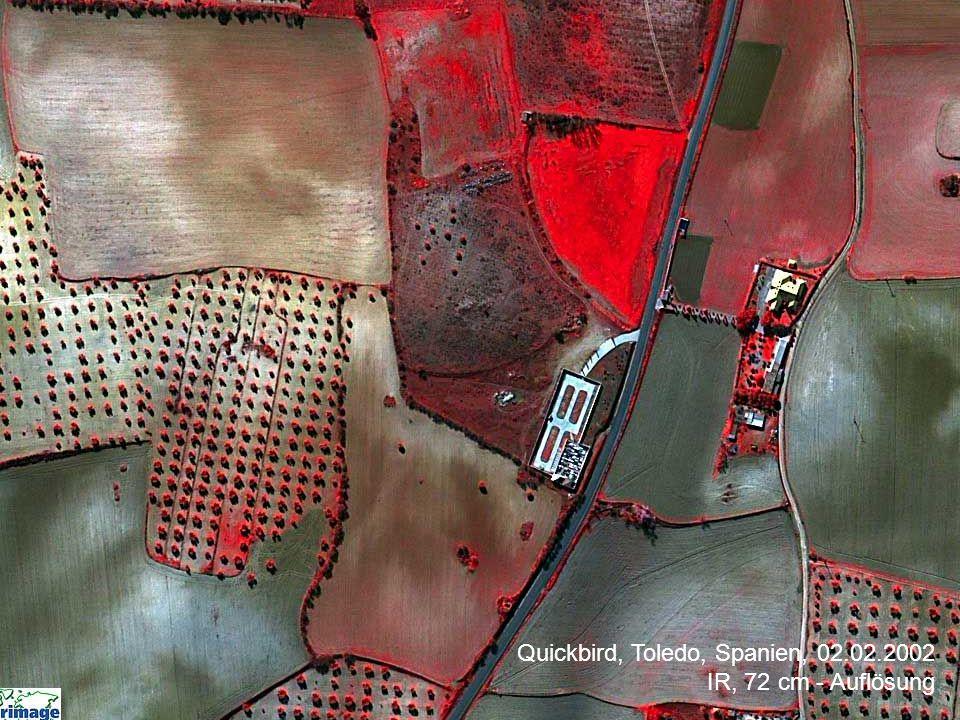 Quickbird, Toledo, Spanien, 02.02.2002 IR, 72 cm - Auflösung