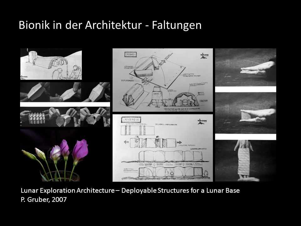 Bionik in der Architektur - Faltungen Lunar Exploration Architecture – Deployable Structures for a Lunar Base P. Gruber, 2007