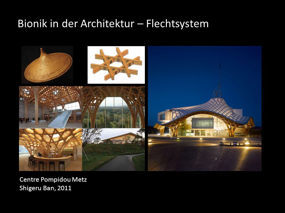 Bionik in der Architektur – Flechtsystem Centre Pompidou Metz Shigeru Ban, 2011