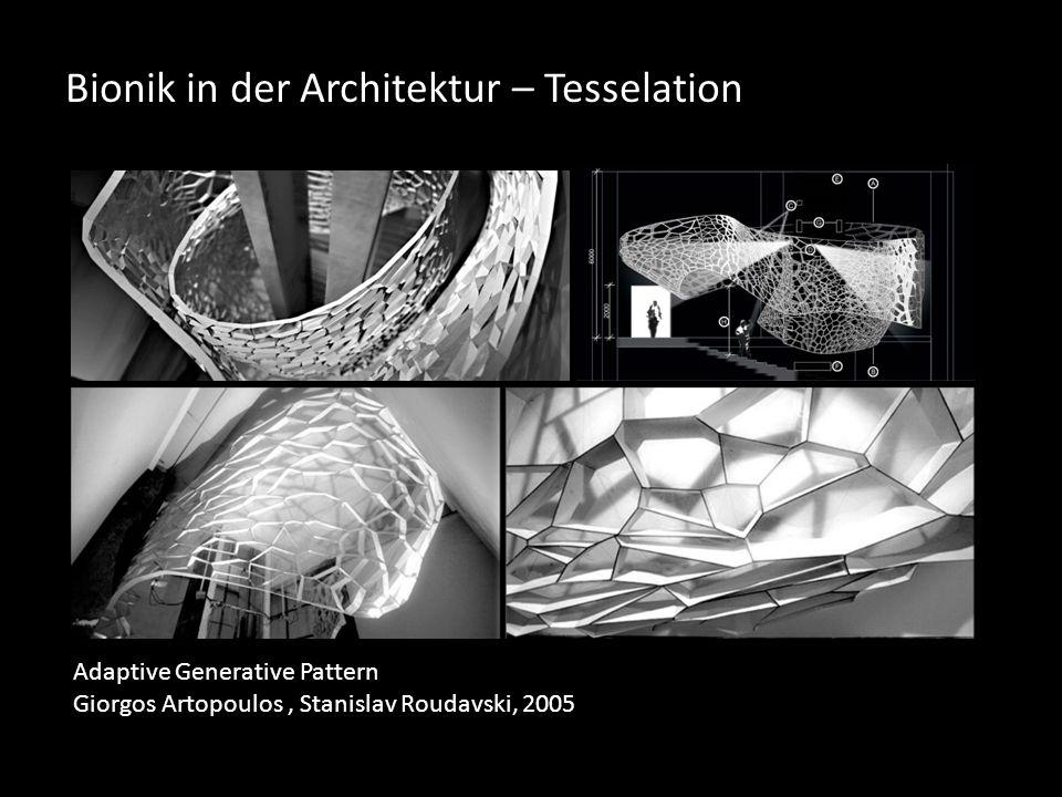 Bionik in der Architektur – Tesselation Adaptive Generative Pattern Giorgos Artopoulos, Stanislav Roudavski, 2005