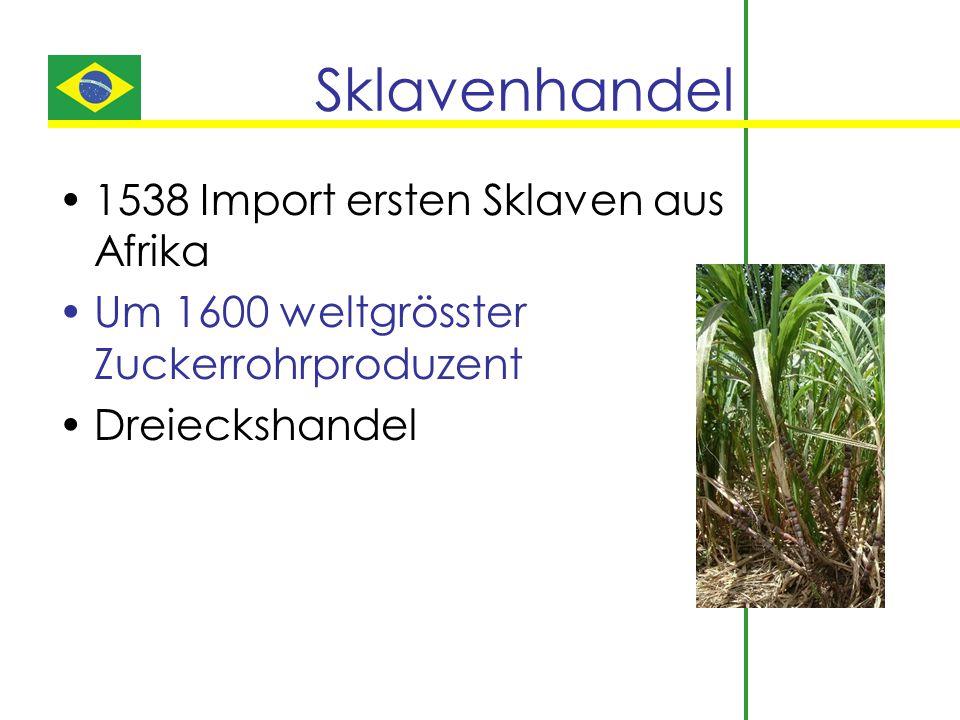 Sklavenhandel 1538 Import ersten Sklaven aus Afrika Um 1600 weltgrösster Zuckerrohrproduzent Dreieckshandel