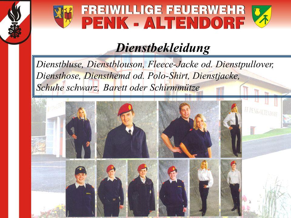 Dienstbekleidung Dienstbluse, Dienstblouson, Fleece-Jacke od. Dienstpullover, Diensthose, Diensthemd od. Polo-Shirt, Dienstjacke, Schuhe schwarz, Bare