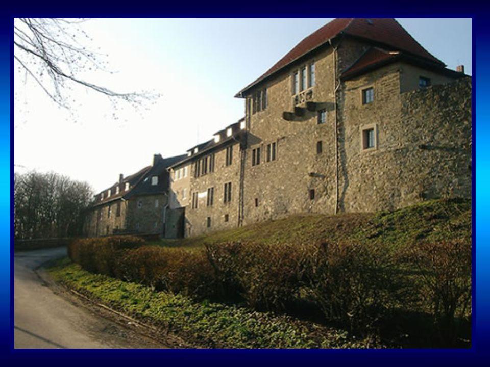 Die Burg liegt auf dem Berg mit dem Namen Sternberg. Mit einer Höhe von 315m ist er einer der schönsten Aussichtspunkte im Lipperland.Die ersten Baute