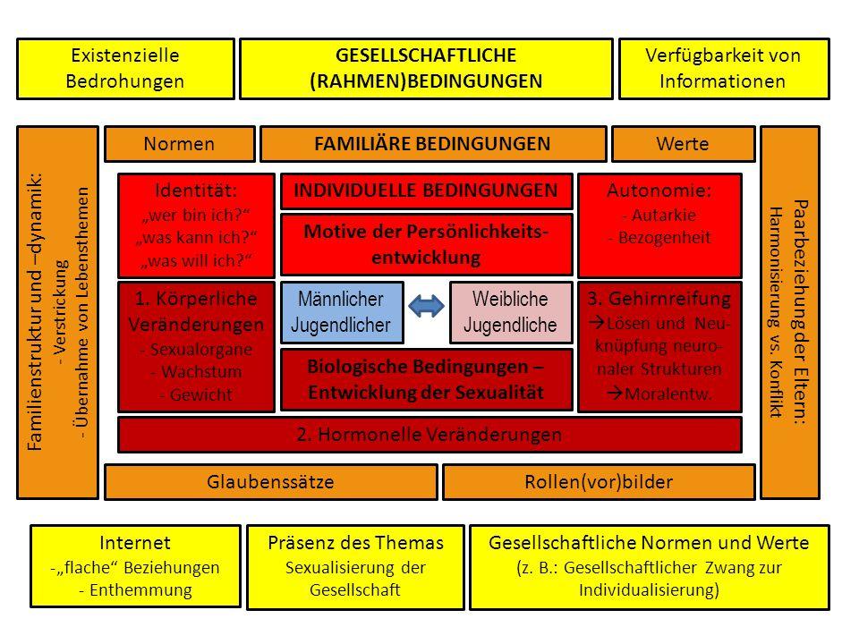 Männlicher Jugendlicher Weibliche Jugendliche Biologische Bedingungen – Entwicklung der Sexualität Motive der Persönlichkeits- entwicklung FAMILIÄRE B