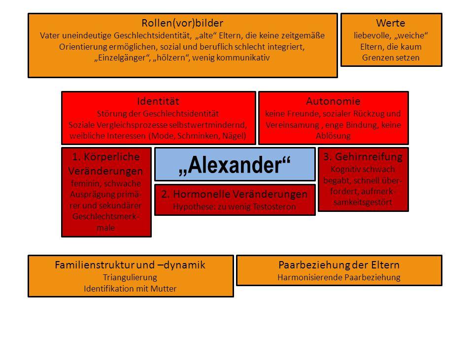 """""""Alexander"""" 3. Gehirnreifung Kognitiv schwach begabt, schnell über- fordert, aufmerk- samkeitsgestört 2. Hormonelle Veränderungen Hypothese: zu wenig"""