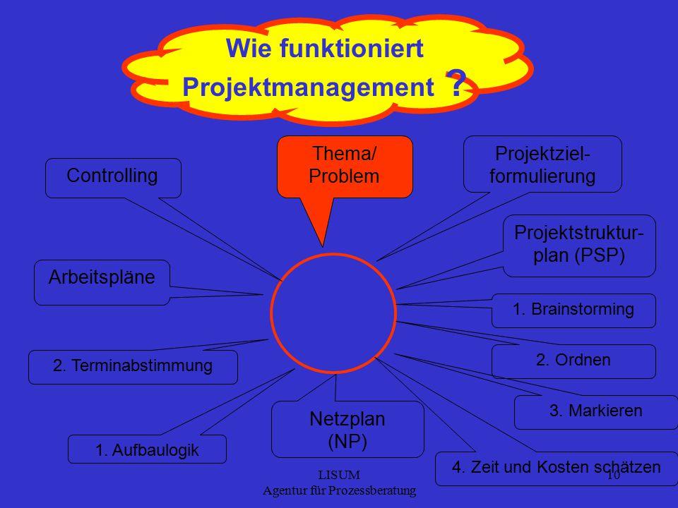 LISUM Agentur für Prozessberatung 10 Wie funktioniert Projektmanagement .