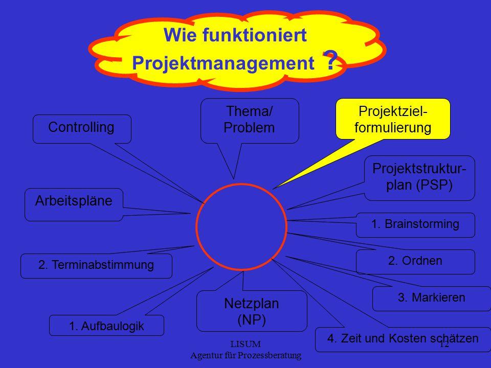 LISUM Agentur für Prozessberatung 12 Wie funktioniert Projektmanagement .