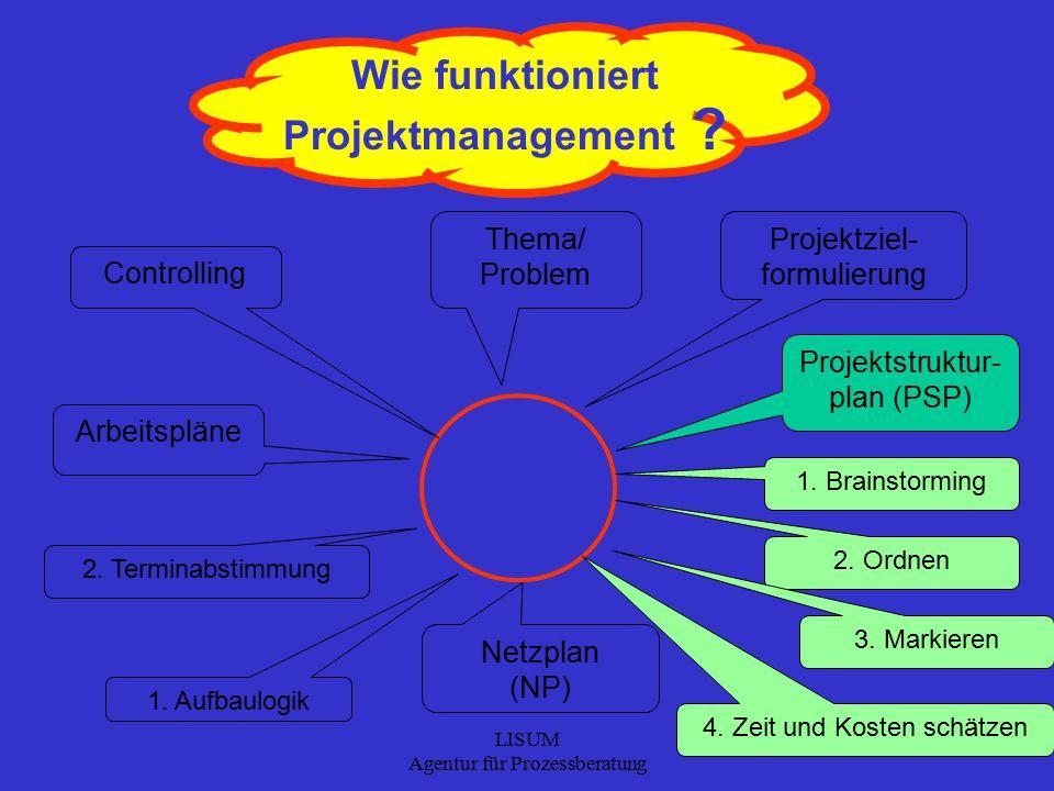 LISUM Agentur für Prozessberatung 16 Wie funktioniert Projektmanagement .