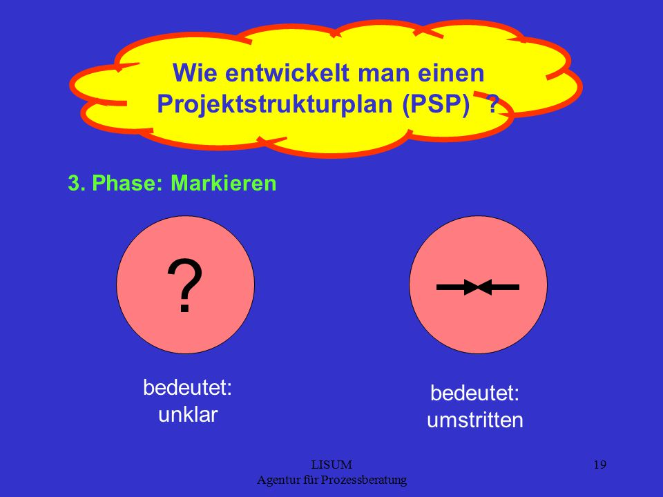 LISUM Agentur für Prozessberatung 19 Wie entwickelt man einen Projektstrukturplan (PSP) .