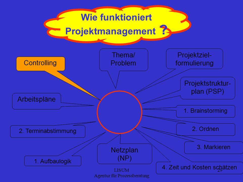 LISUM Agentur für Prozessberatung 29 Wie funktioniert Projektmanagement .