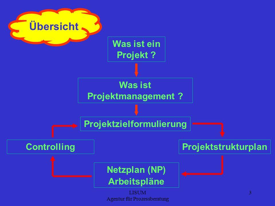 LISUM Agentur für Prozessberatung 3 Übersicht Was ist ein Projekt .