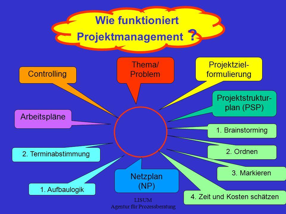 LISUM Agentur für Prozessberatung 9 Wie funktioniert Projektmanagement .