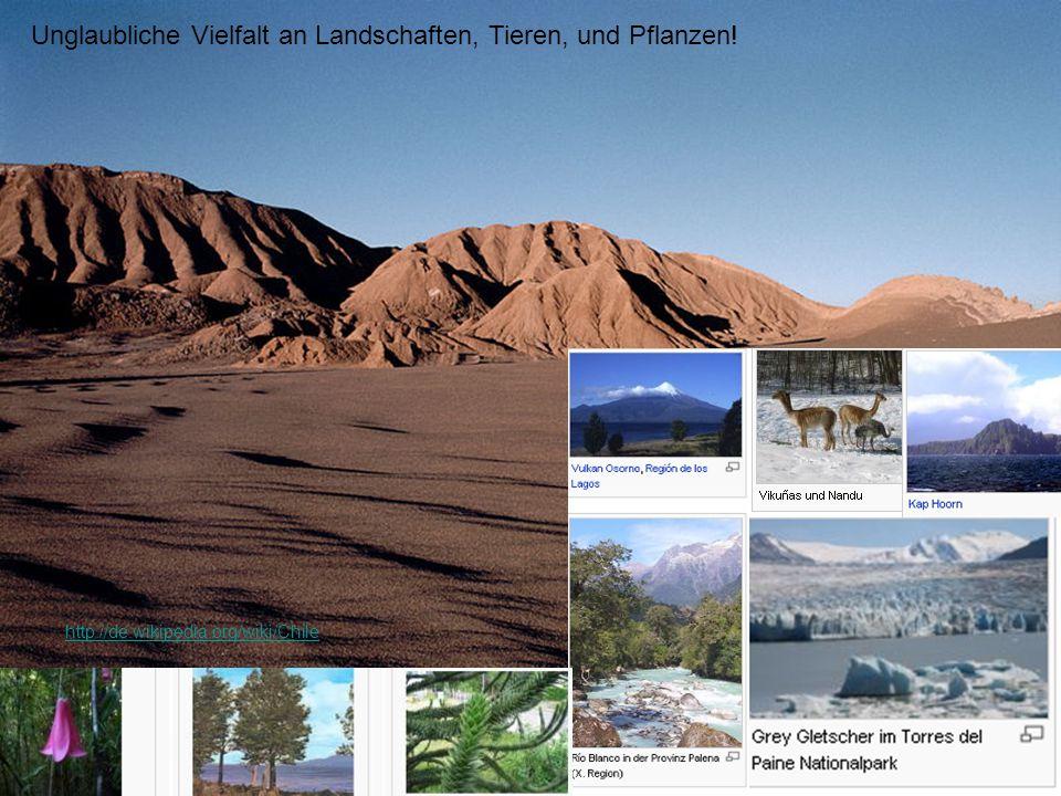Unglaubliche Vielfalt an Landschaften, Tieren, und Pflanzen! http://de.wikipedia.org/wiki/Chile