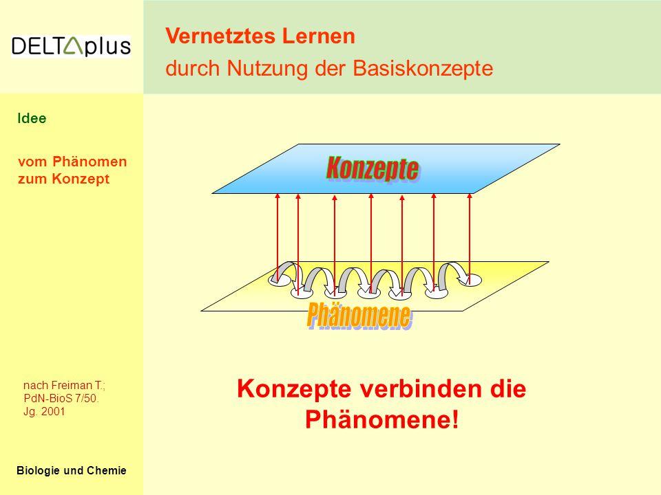 Biologie und Chemie Konzepte verbinden die Phänomene! nach Freiman T.; PdN-BioS 7/50. Jg. 2001 vom Phänomen zum Konzept Vernetztes Lernen durch Nutzun