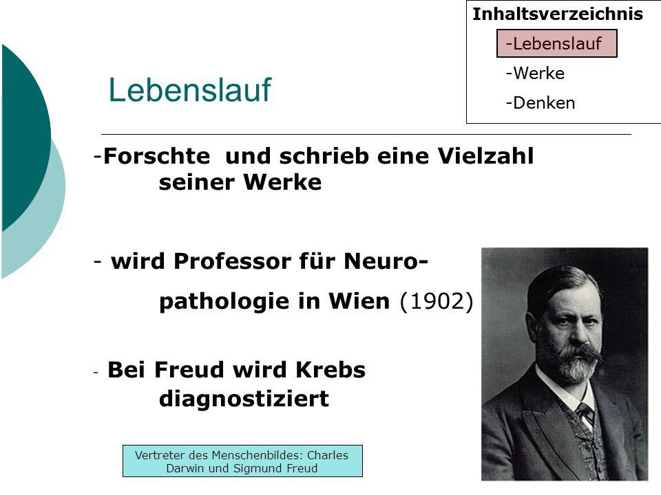Inhaltsverzeichnis -Lebenslauf -Werke -Denken Inhaltsverzeichnis -Lebenslauf -Werke -Denken Vertreter des Menschenbildes: Charles Darwin und Sigmund Freud Lebenslauf -Forschte und schrieb eine Vielzahl seiner Werke - wird Professor für Neuro- pathologie in Wien (1902) - Bei Freud wird Krebs diagnostiziert
