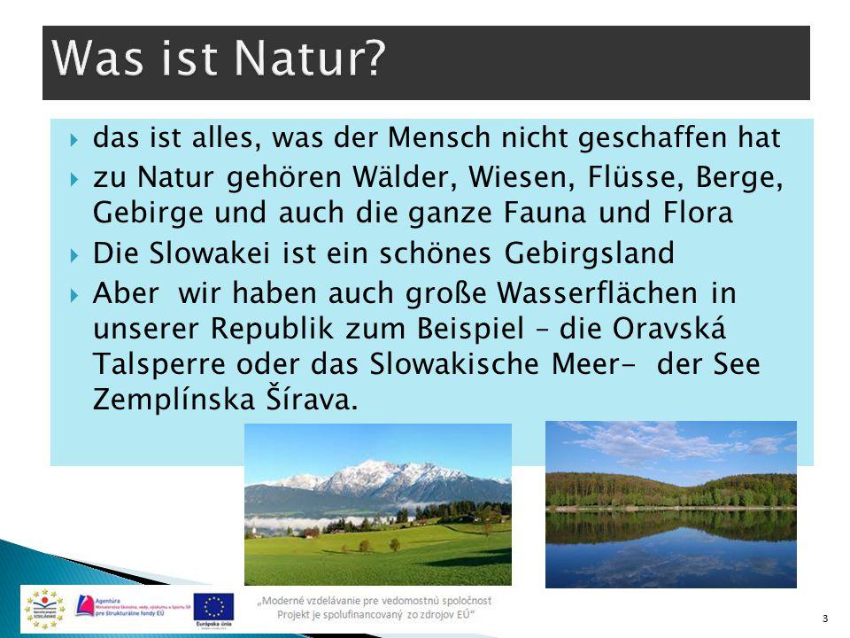  das ist alles, was der Mensch nicht geschaffen hat  zu Natur gehören Wälder, Wiesen, Flüsse, Berge, Gebirge und auch die ganze Fauna und Flora  Di