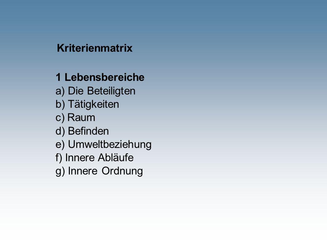 Kriterienmatrix 1 Lebensbereiche a) Die Beteiligten b) Tätigkeiten c) Raum d) Befinden e) Umweltbeziehung f) Innere Abläufe g) Innere Ordnung