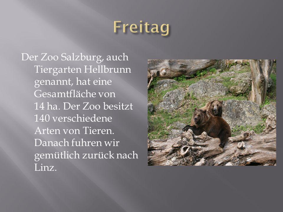 Der Zoo Salzburg, auch Tiergarten Hellbrunn genannt, hat eine Gesamtfläche von 14 ha.