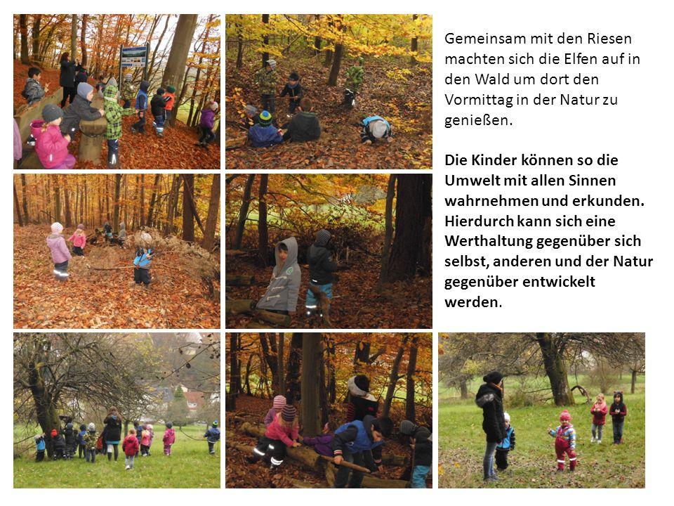 Gemeinsam mit den Riesen machten sich die Elfen auf in den Wald um dort den Vormittag in der Natur zu genießen.