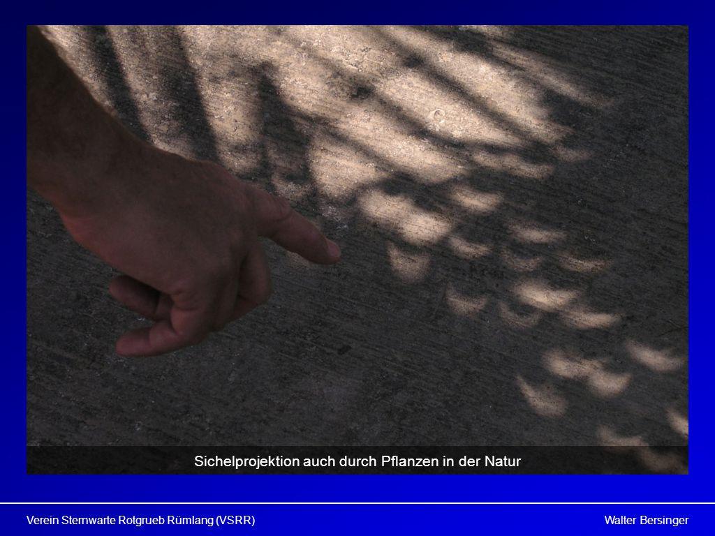 Walter BersingerVerein Sternwarte Rotgrueb Rümlang (VSRR) Sichelprojektion auch durch Pflanzen in der Natur