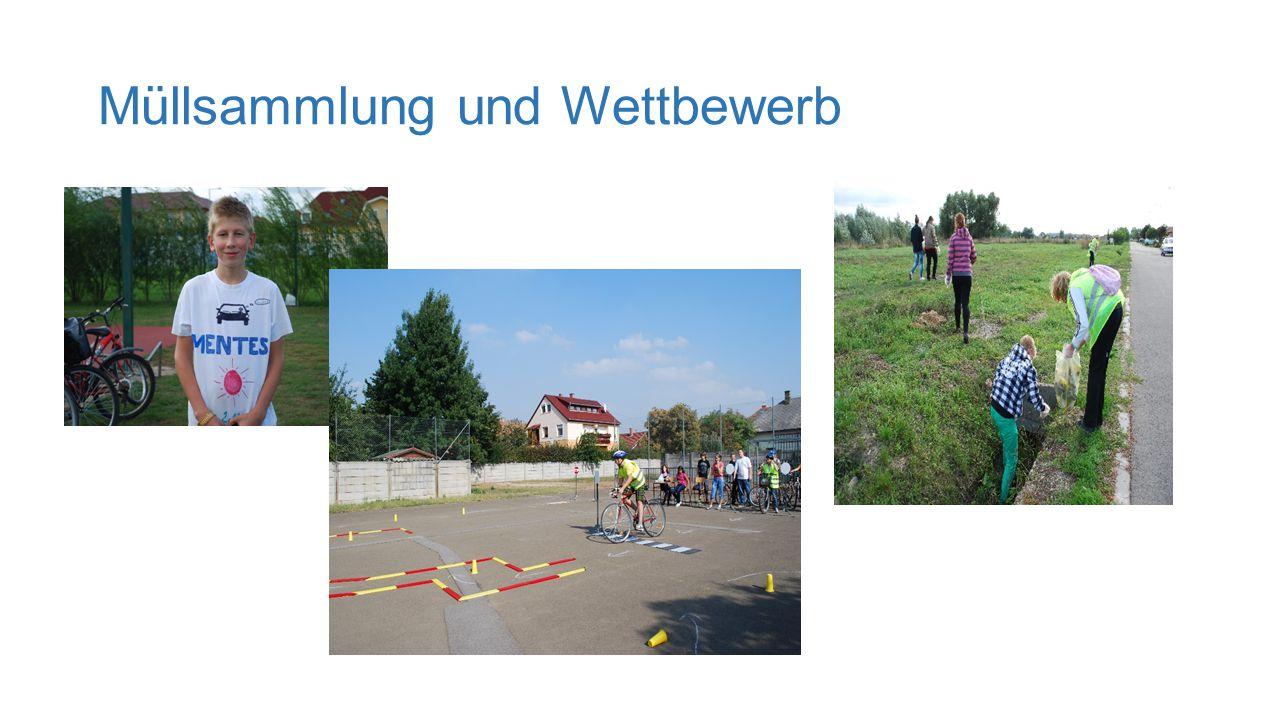 2. Pflanzaktion II. Planzaktion: Samen von der Schule Zu Hause in dem Garten