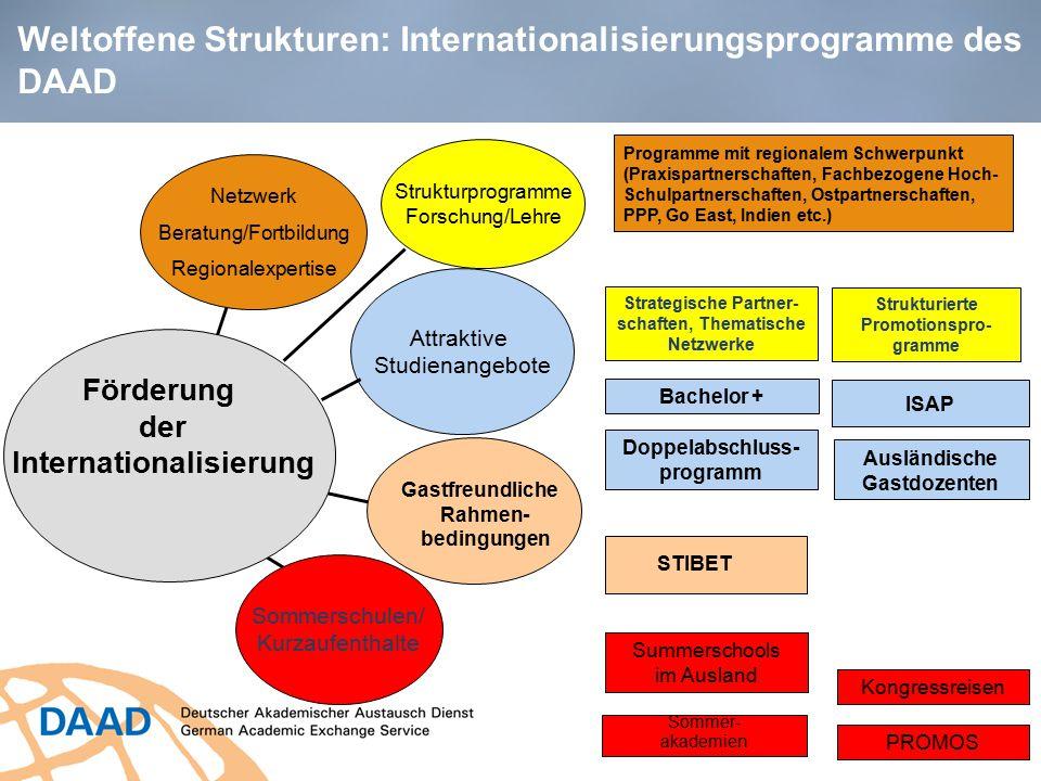 Weltoffene Strukturen: Internationalisierungsprogramme des DAAD Förderung der Internationalisierung Attraktive Studienangebote Sommerschulen/ Kurzaufe