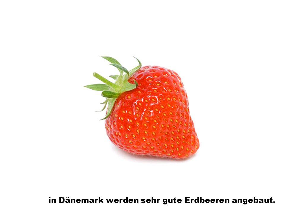 in Dänemark werden sehr gute Erdbeeren angebaut.