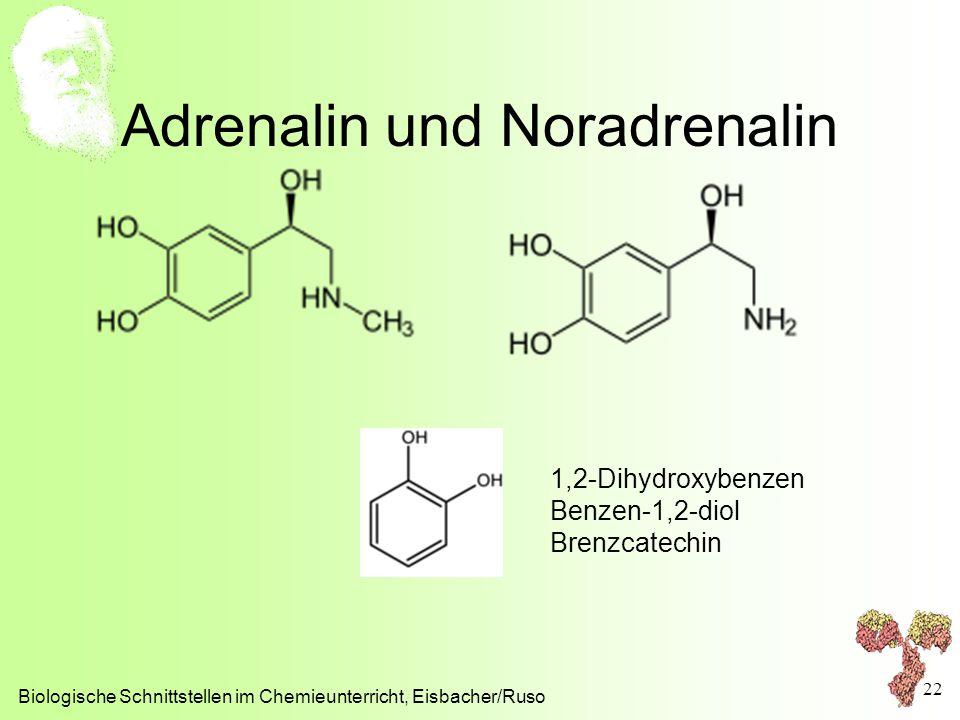 Adrenalin und Noradrenalin Biologische Schnittstellen im Chemieunterricht, Eisbacher/Ruso 22 1,2-Dihydroxybenzen Benzen-1,2-diol Brenzcatechin