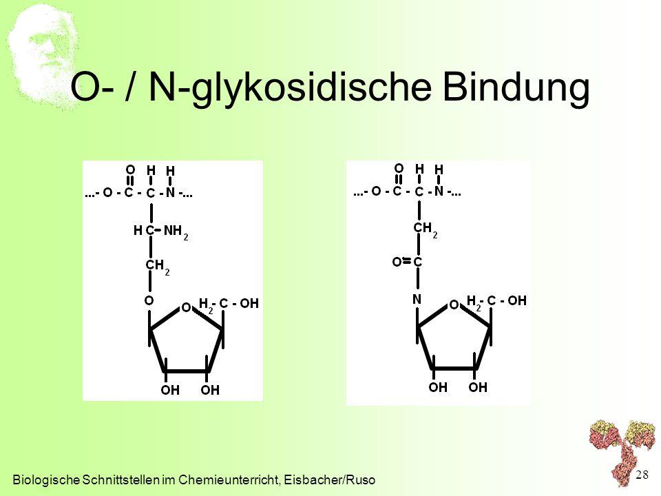 O- / N-glykosidische Bindung Biologische Schnittstellen im Chemieunterricht, Eisbacher/Ruso 28