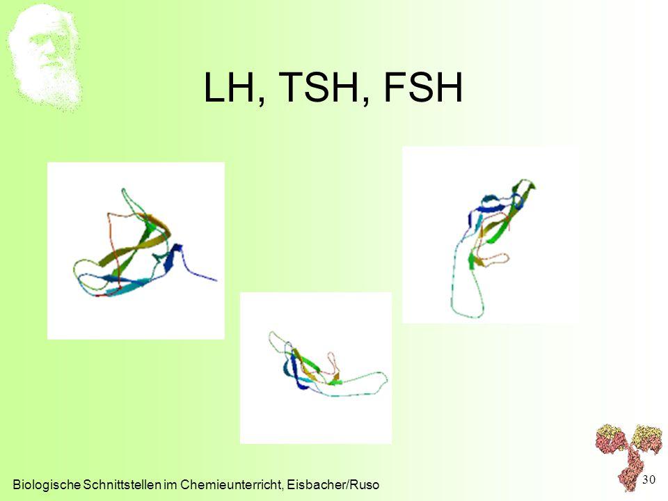 LH, TSH, FSH Biologische Schnittstellen im Chemieunterricht, Eisbacher/Ruso 30