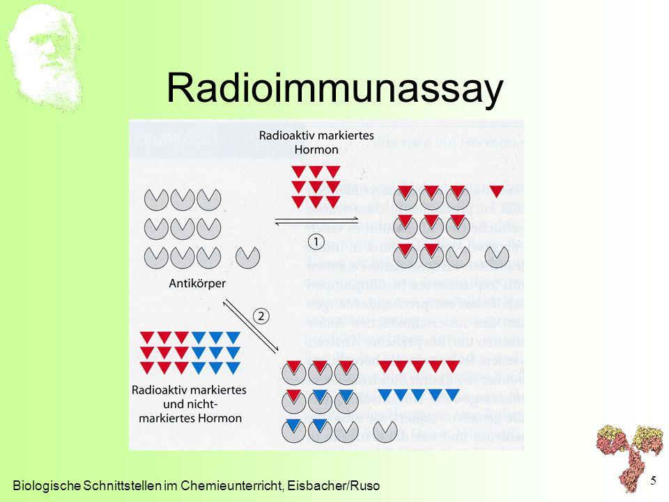 Radioimmunassay Biologische Schnittstellen im Chemieunterricht, Eisbacher/Ruso 5