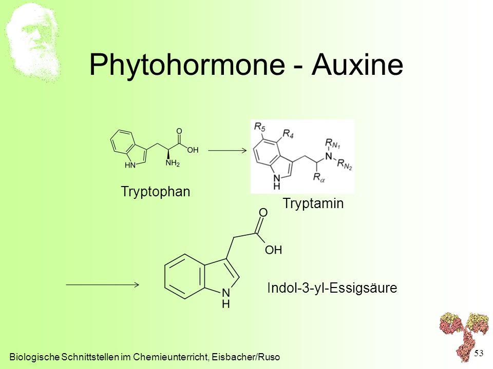 Phytohormone - Auxine Biologische Schnittstellen im Chemieunterricht, Eisbacher/Ruso 53 Tryptophan Tryptamin Indol-3-yl-Essigsäure