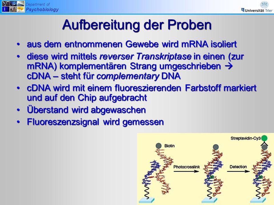 Department of Psychobiology Aufbereitung der Proben aus dem entnommenen Gewebe wird mRNA isoliertaus dem entnommenen Gewebe wird mRNA isoliert diese w