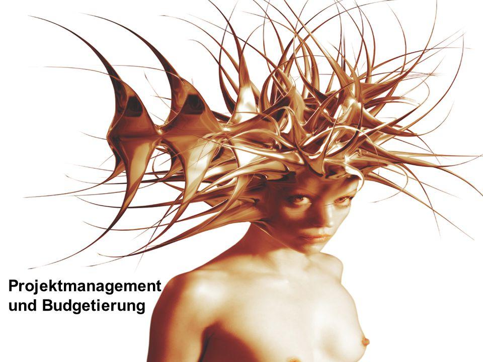 Projektmanagement und Budgetierung