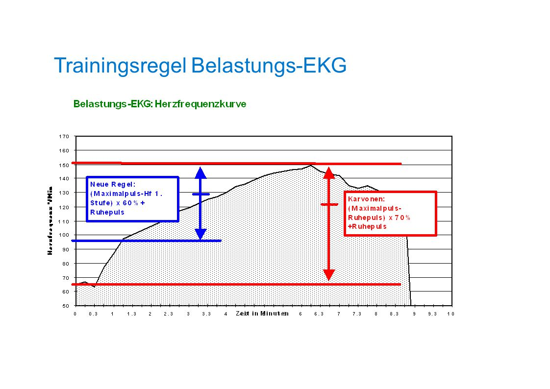 Trainingsregel Belastungs-EKG
