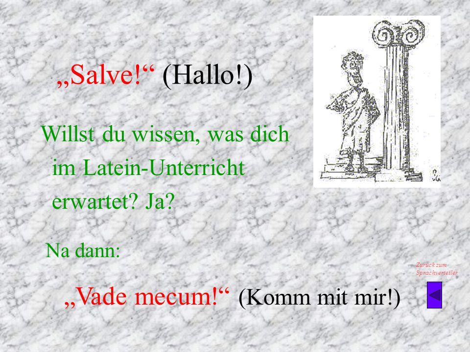 """""""Salve! (Hallo!) Willst du wissen, was dich im Latein-Unterricht erwartet."""