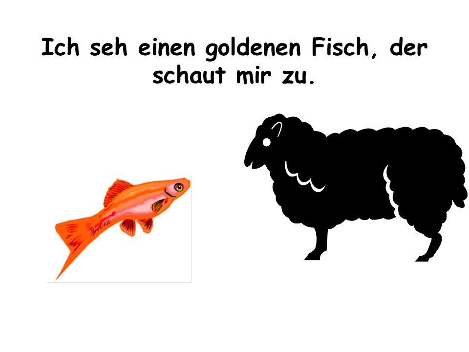 Ich seh einen goldenen Fisch, der schaut mir zu.