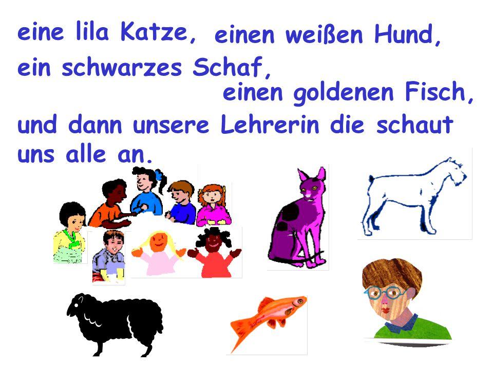 eine lila Katze, einen weißen Hund, ein schwarzes Schaf, einen goldenen Fisch, und dann unsere Lehrerin die schaut uns alle an.