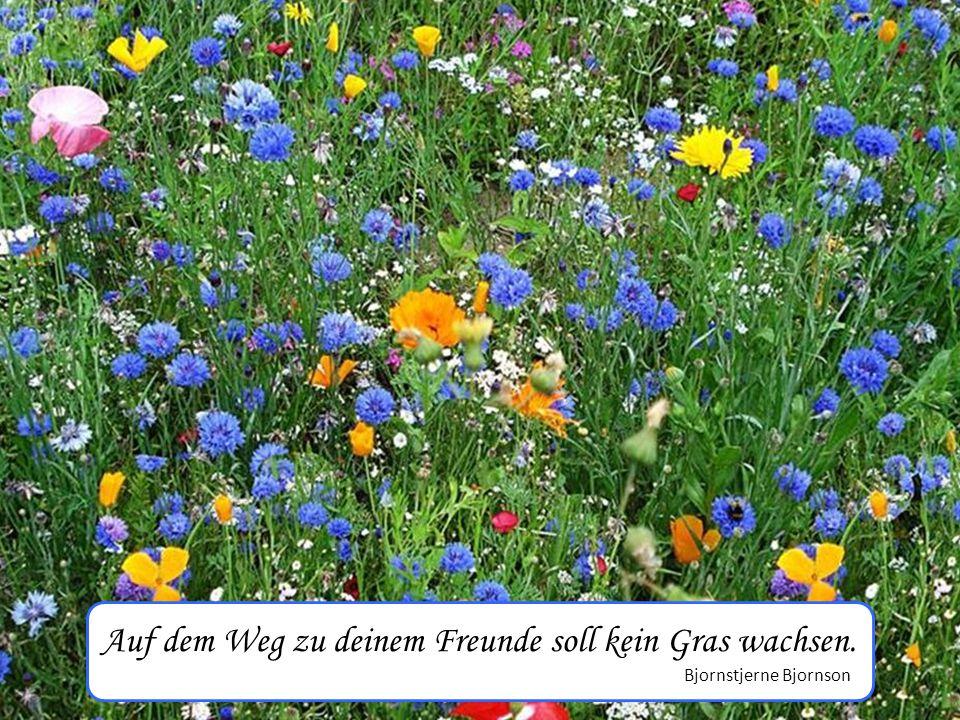 Auf dem Weg zu deinem Freunde soll kein Gras wachsen. Bjornstjerne Bjornson