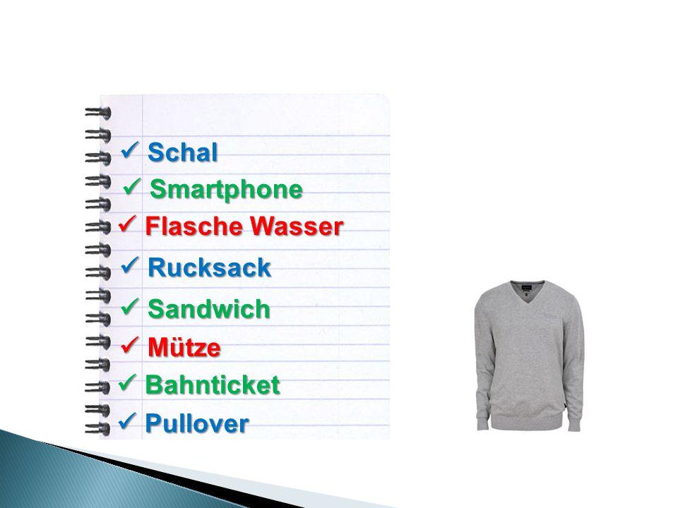 Schal Schal Smartphone Smartphone Flasche Wasser Flasche Wasser Rucksack Rucksack Sandwich Sandwich Mütze Mütze Bahnticket Bahnticket Pullover Pullover