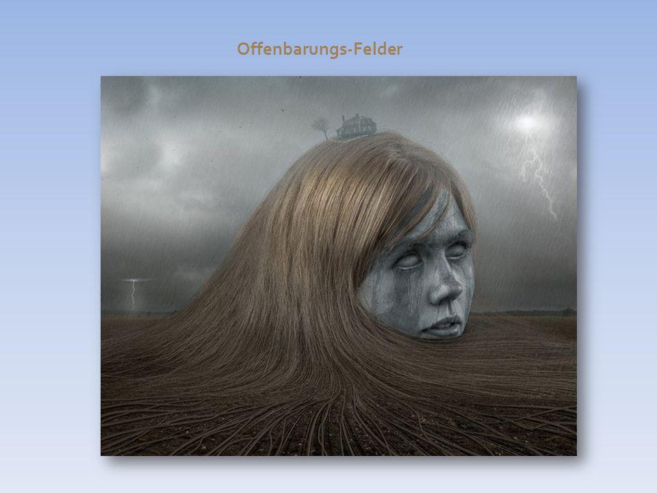 Offenbarungs-Felder