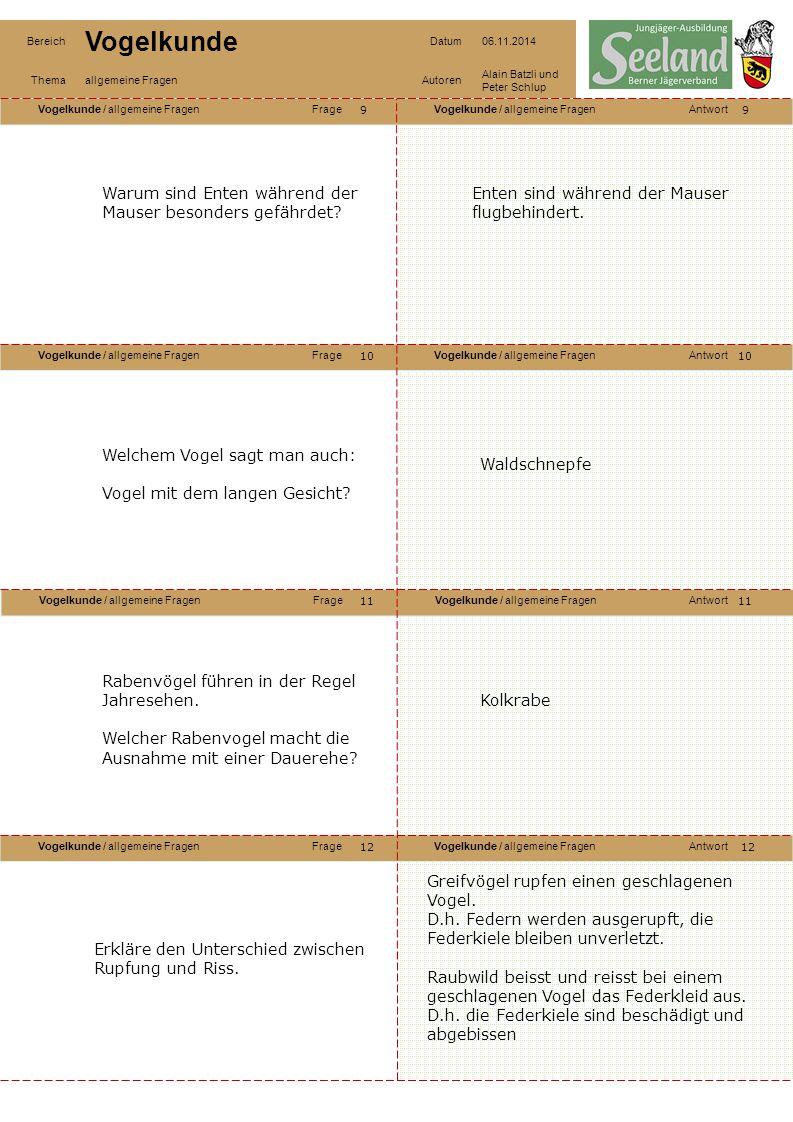 Vogelkunde / allgemeine FragenFrageVogelkunde / allgemeine FragenAntwort Vogelkunde / allgemeine FragenFrageVogelkunde / allgemeine FragenAntwort Voge