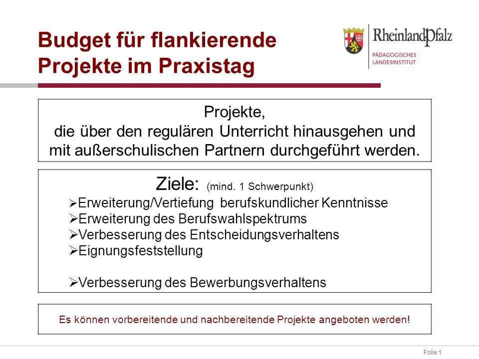 Folie 1 Budget für flankierende Projekte im Praxistag Ziele: (mind. 1 Schwerpunkt)  Erweiterung/Vertiefung berufskundlicher Kenntnisse  Erweiterung
