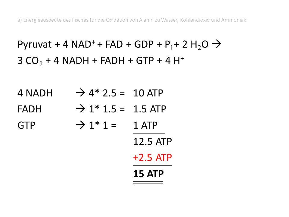 b) Energieausbeute eines Säugetieres für den Abbau von Alanin Transaminierung und oxidative Desaminierung: 1 NAD(P)H  2.5 ATP Oxidative Decarboxylierung und Citrat-Zyklus: 4 NADH + 1 FADH + 1 GTP  12.5 ATP  15 ATP aber: NH 4 + kann nicht ausgeschieden werden  Weiterverarbeitung in Harnstoffzyklus