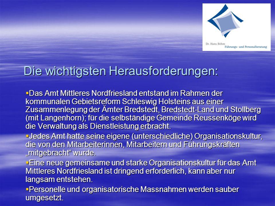 Die wichtigsten Herausforderungen:  Das Amt Mittleres Nordfriesland entstand im Rahmen der kommunalen Gebietsreform Schleswig Holsteins aus einer Zus