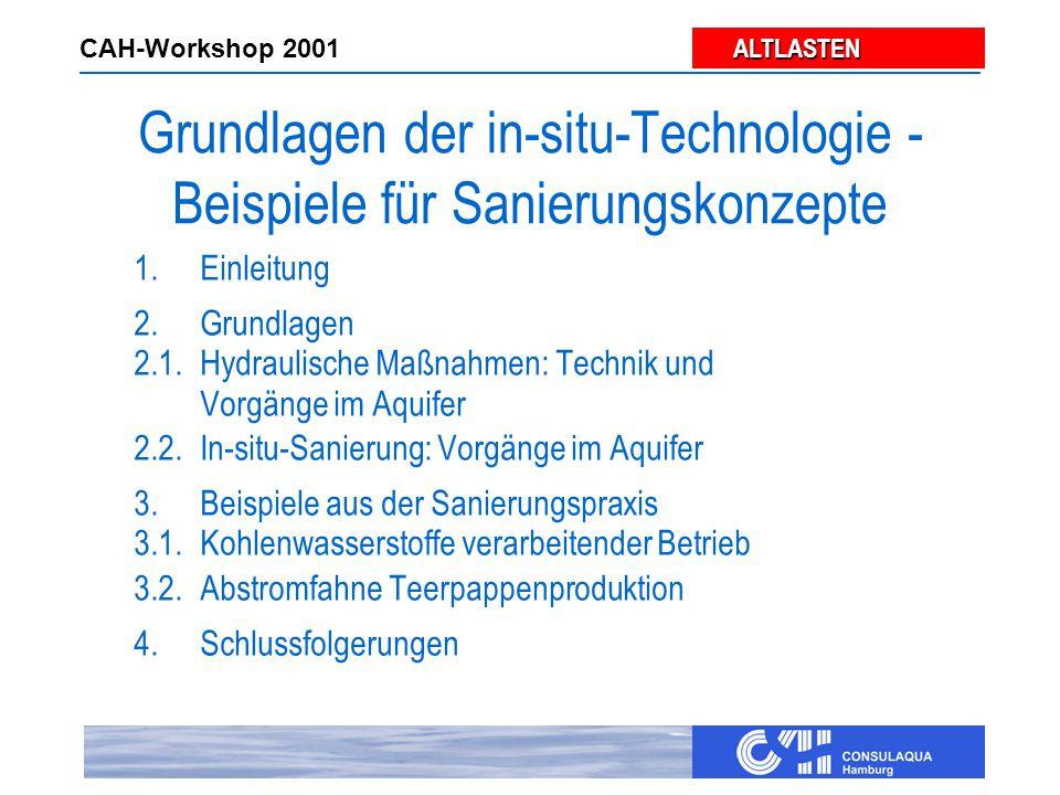 ALTLASTEN ALTLASTEN CAH-Workshop 2001 Pump and Treat
